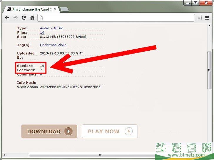 如何使用种子(BitTorrent)