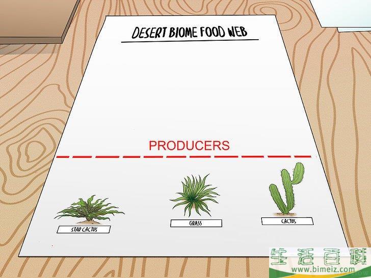 如何画一张食物网