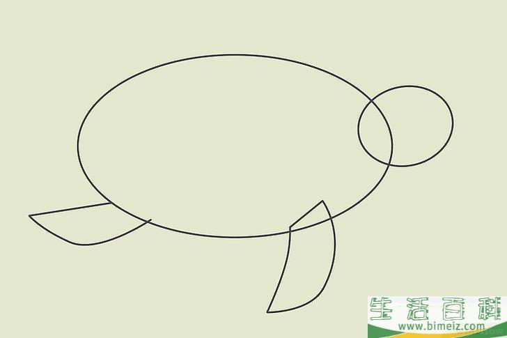 如何画乌龟