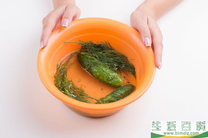 怎么腌莳萝泡菜