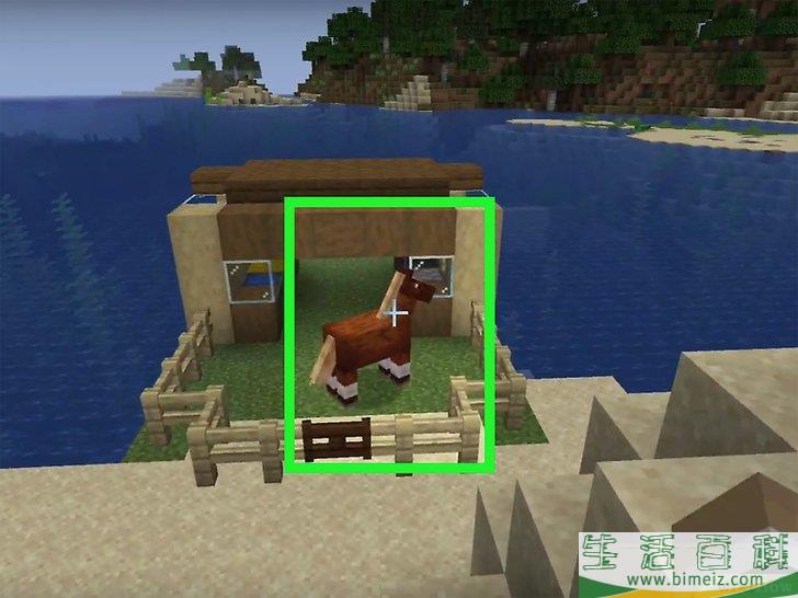 怎么在《我的世界》中驯服一匹马